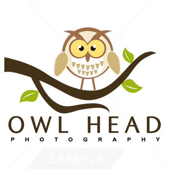 Owl Logo designs themes templates and downloadable